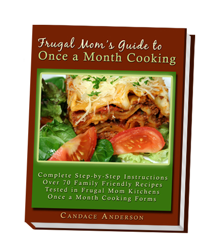 Once a Month Cooking book
